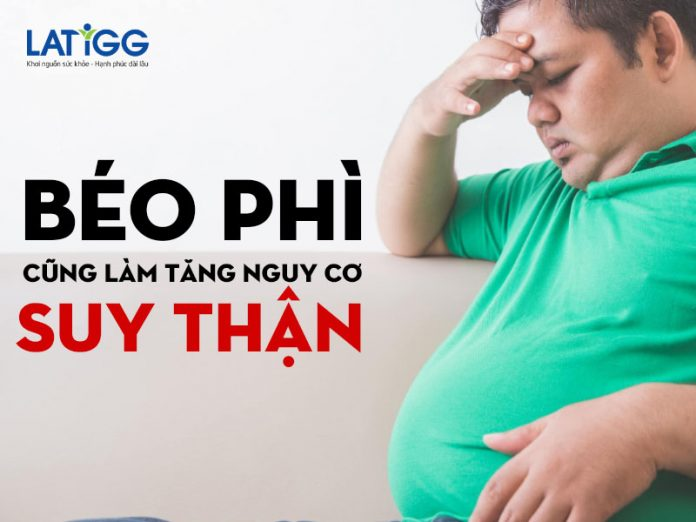 beo-phi-cung-tang-nguy-co-suy-than
